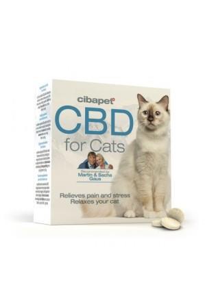 Pastilhas de CBD para Gatos