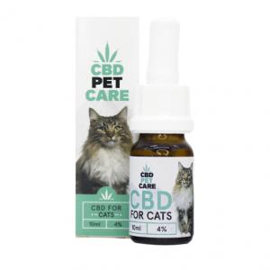 Óleo de CBD para Gatos – 4%